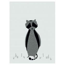 Trixie Plakat Mr.Raccoon