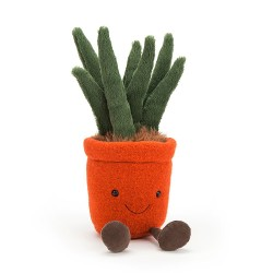 Amuseable Yucca
