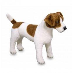 Pluszak Terrier Jack Russell